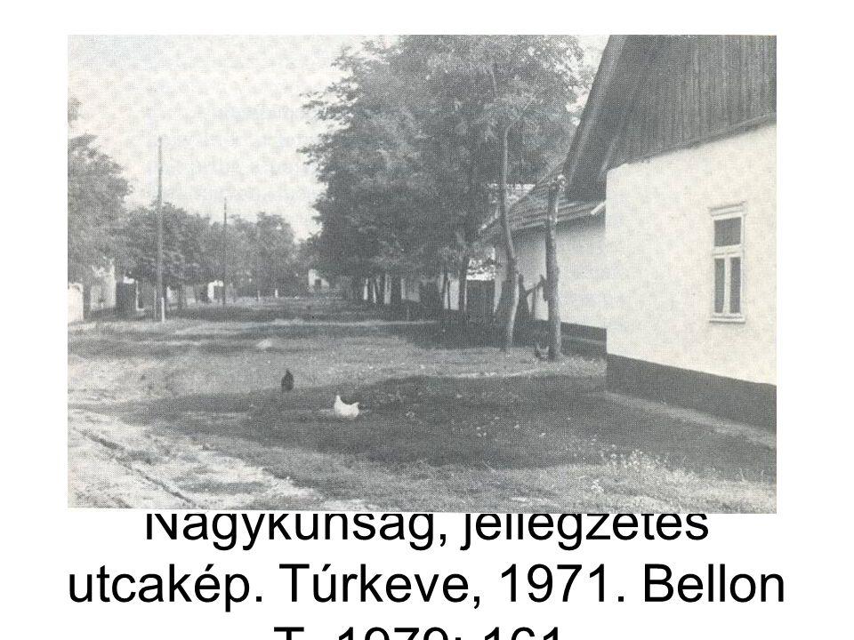 Nagykunság, jellegzetes utcakép. Túrkeve, 1971. Bellon T. 1979: 161.