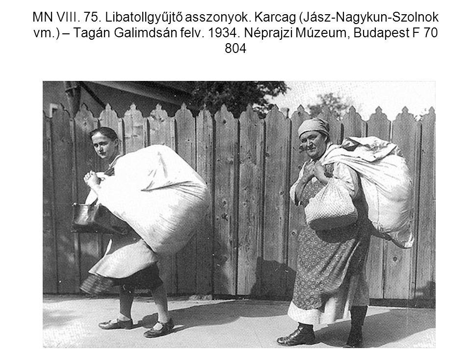 MN VIII. 75. Libatollgyűjtő asszonyok. Karcag (Jász-Nagykun-Szolnok vm.) – Tagán Galimdsán felv. 1934. Néprajzi Múzeum, Budapest F 70 804