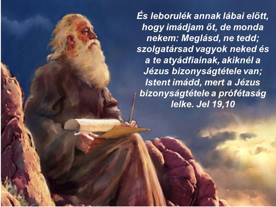 És leborulék annak lábai előtt, hogy imádjam őt, de monda nekem: Meglásd, ne tedd; szolgatársad vagyok neked és a te atyádfiainak, akiknél a Jézus biz