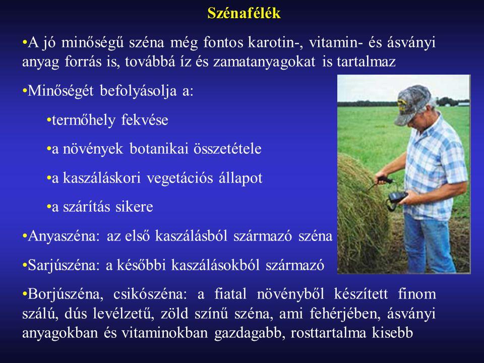 Szénafélék A jó minőségű széna még fontos karotin-, vitamin- és ásványi anyag forrás is, továbbá íz és zamatanyagokat is tartalmaz Minőségét befolyásolja a: termőhely fekvése a növények botanikai összetétele a kaszáláskori vegetációs állapot a szárítás sikere Anyaszéna: az első kaszálásból származó széna Sarjúszéna: a későbbi kaszálásokból származó Borjúszéna, csikószéna: a fiatal növényből készített finom szálú, dús levélzetű, zöld színű széna, ami fehérjében, ásványi anyagokban és vitaminokban gazdagabb, rosttartalma kisebb
