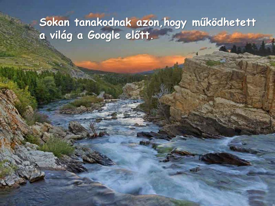 A Google napi 300 millió keresést regisztrál.