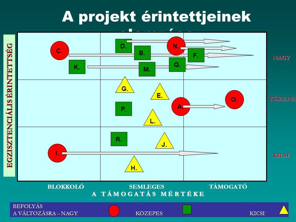Dr.Puskás János 33 A projekt érintettjeinek elemzése C.
