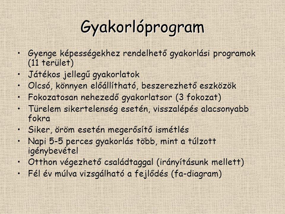 Gyakorlóprogram Gyenge képességekhez rendelhető gyakorlási programok (11 terület) Játékos jellegű gyakorlatok Olcsó, könnyen előállítható, beszerezhet