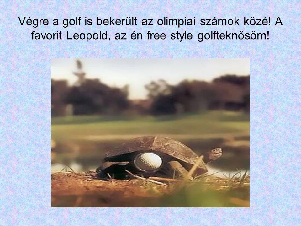 Végre a golf is bekerült az olimpiai számok közé! A favorit Leopold, az én free style golfteknősöm!