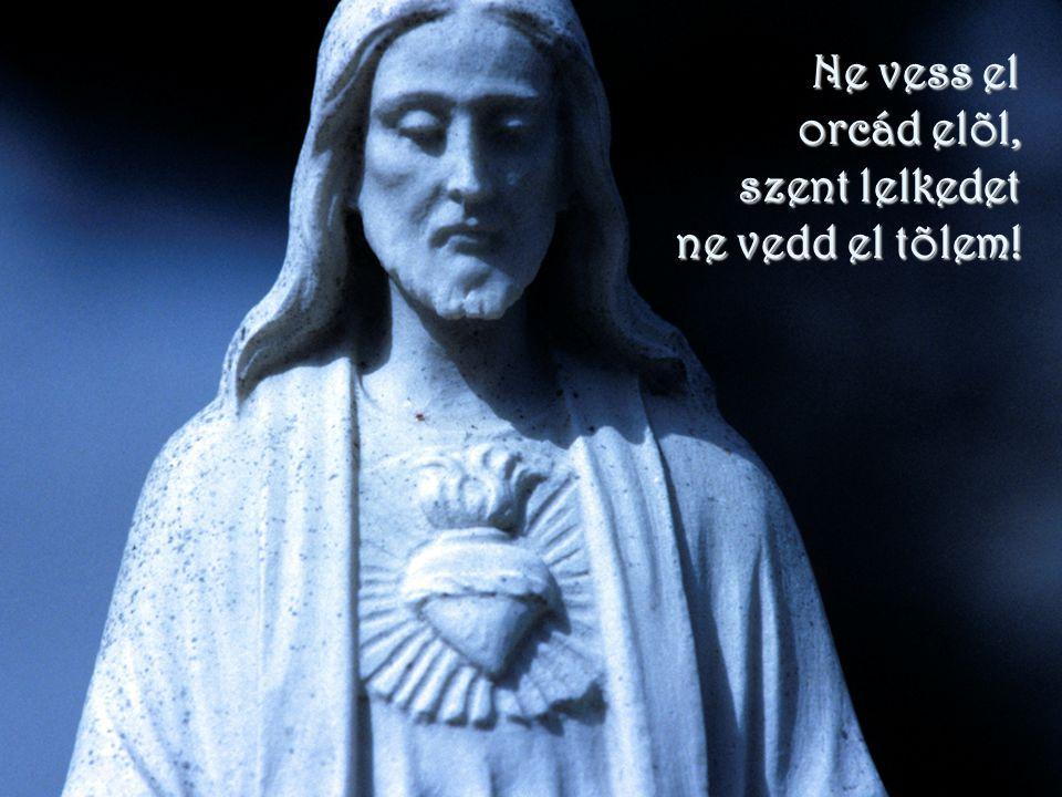 Ne vess el orcád elõl, szent lelkedet ne vedd el tõlem!