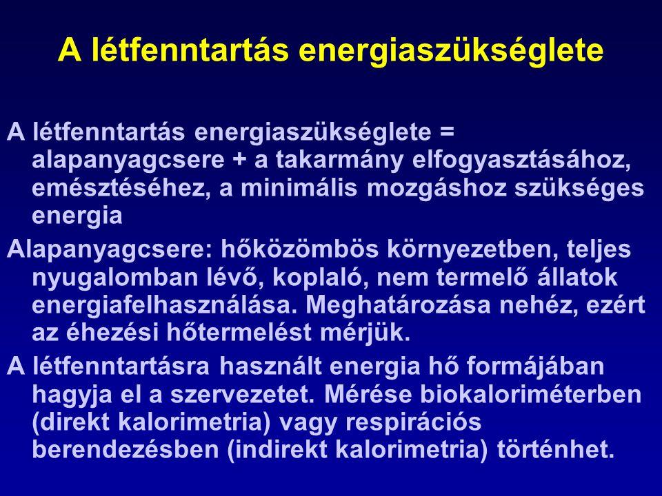 A létfenntartás energiaszükséglete A létfenntartás energiaszükséglete = alapanyagcsere + a takarmány elfogyasztásához, emésztéséhez, a minimális mozgá