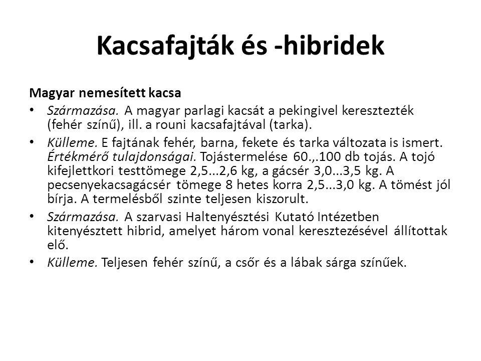 Kacsafajták és -hibridek Magyar nemesített kacsa Származása. A magyar parlagi kacsát a pekingivel keresztezték (fehér színű), ill. a rouni kacsafajtáv