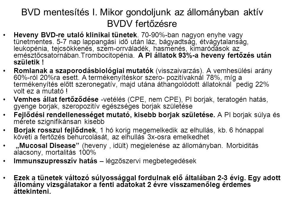 BVD mentesítés I. Mikor gondoljunk az állományban aktív BVDV fertőzésre Heveny BVD-re utaló klinikai tünetek. 70-90%-ban nagyon enyhe vagy tünetmentes