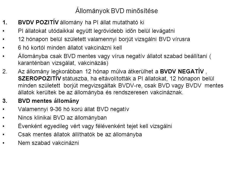 Állományok BVD minősítése 1.BVDV POZITÍV állomány ha PI állat mutatható ki PI állatokat utódaikkal együtt legrövidebb időn belül levágatni 12 hónapon