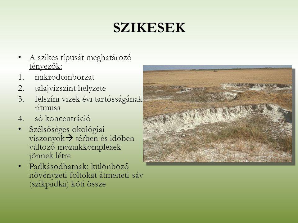 SZIKESEK A szikes típusát meghatározó tényezők: 1.mikrodomborzat 2.talajvízszint helyzete 3.felszíni vizek évi tartósságának ritmusa 4.só koncentráció