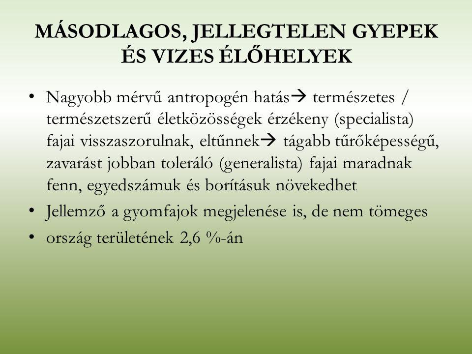 MÁSODLAGOS, JELLEGTELEN GYEPEK ÉS VIZES ÉLŐHELYEK Nagyobb mérvű antropogén hatás  természetes / természetszerű életközösségek érzékeny (specialista)