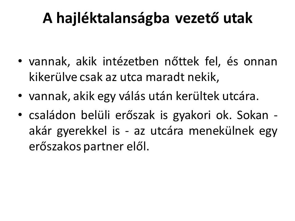 Felhasznált irodalom 2.Pik Katalin: Kik a hajléktalanok és mit tehetünk értük.