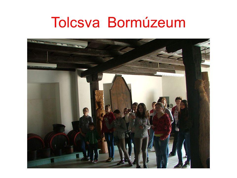 Tolcsva Bormúzeum