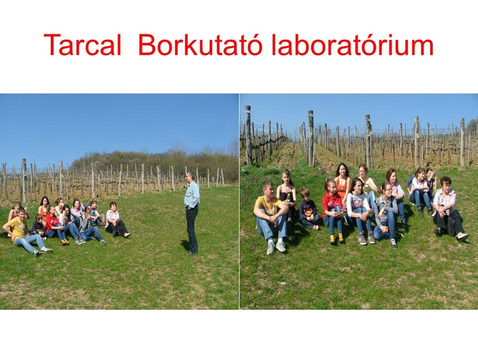 Tarcal Borkutató laboratórium