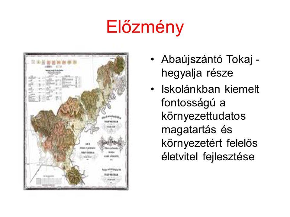 Előzmény Abaújszántó Tokaj - hegyalja része Iskolánkban kiemelt fontosságú a környezettudatos magatartás és környezetért felelős életvitel fejlesztése