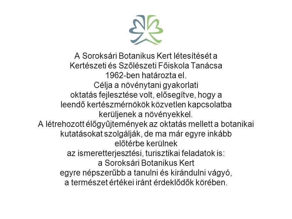 Természetvédelem. A Soroksári Botanikus Kert 1977 óta fővárosi természetvédelmi terület. A Kert különleges adottsága, hogy területén értékes, eredeti