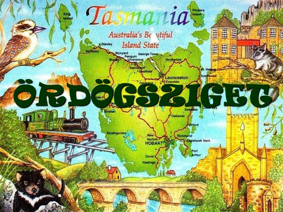 A Tasmánia partjainál húzódó Tessellated Pavement,vagyis a világ legnagyobb mozaikpadlója az egyik legfurcsább olyan természeti forma,mely az erózió révén jött létre.