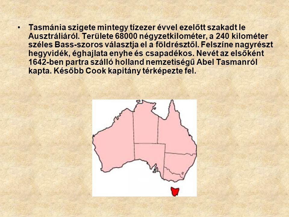Tasmánia szigete mintegy tízezer évvel ezelőtt szakadt le Ausztráliáról.
