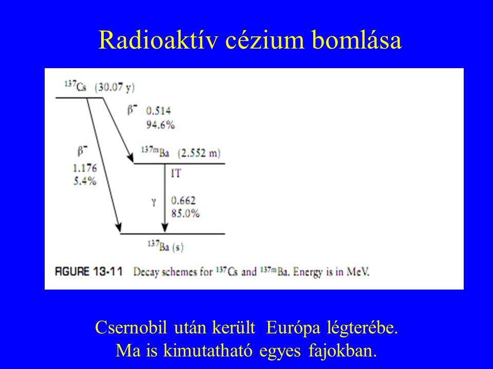 Radioaktív cézium bomlása Csernobil után került Európa légterébe. Ma is kimutatható egyes fajokban.