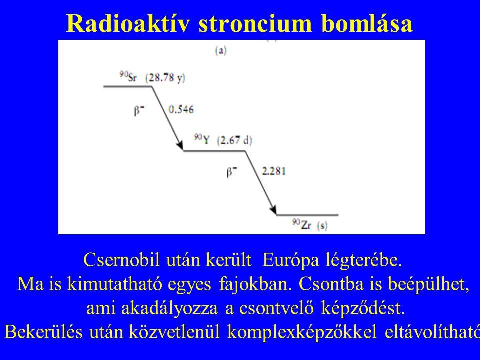 Radioaktív stroncium bomlása Csernobil után került Európa légterébe. Ma is kimutatható egyes fajokban. Csontba is beépülhet, ami akadályozza a csontve