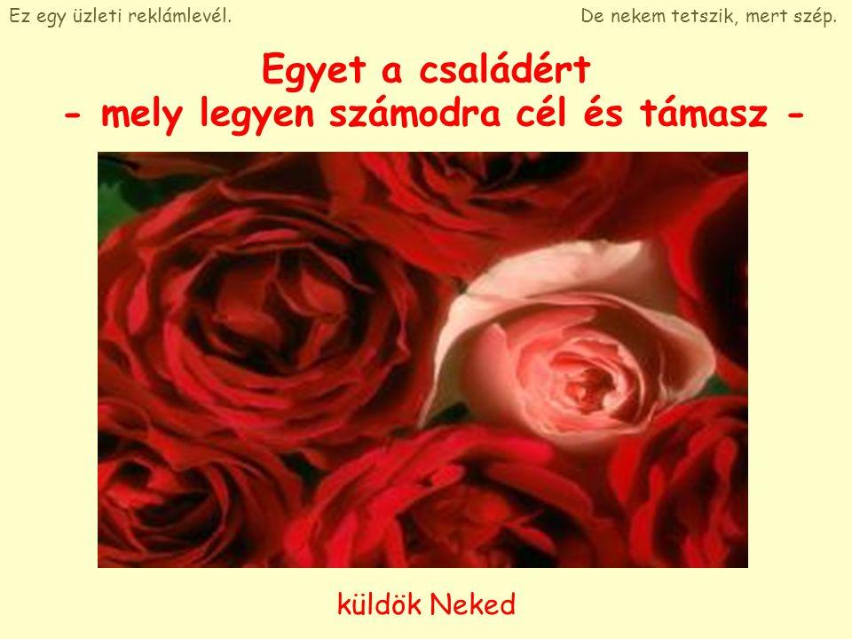 Egyet a szépségért - mert az megérdemel egy rózsát - Ez egy üzleti reklámlevél.