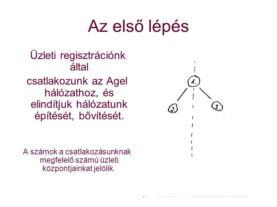 Az első lépés Üzleti regisztrációnk által csatlakozunk az Agel hálózathoz, és elindítjuk hálózatunk építését, bővítését.