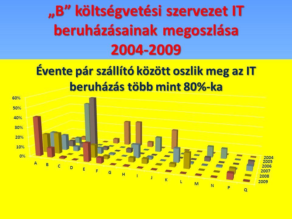 """""""B"""" költségvetési szervezet IT beruházásainak megoszlása 2004-2009"""