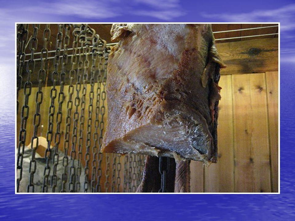 A cápák kiválasztó szervrendszere elég fejletlen, a vizeletét a bőrén keresztül adja le, ezért a húsa erősen az ammónia szagú, ezt próbálják rohasztás