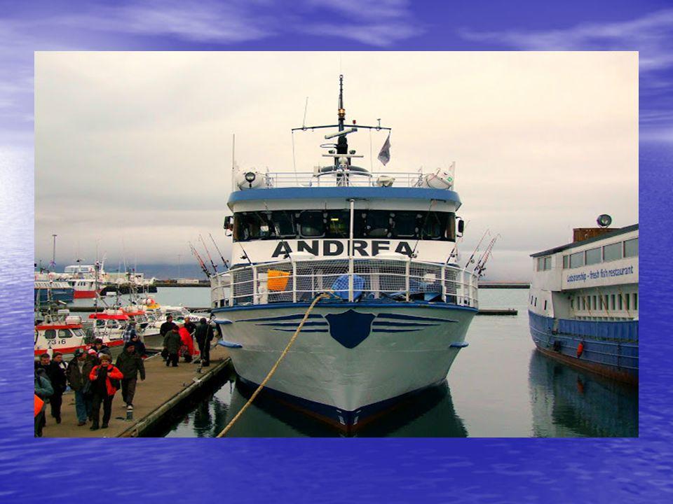 A kikötőben robusztusnak tűnő hajó, a nyílt vízen igen csak hánykolódik. A több méteres hullámok hatására, szinte mindenki sápadtan, félig átfagyva ka