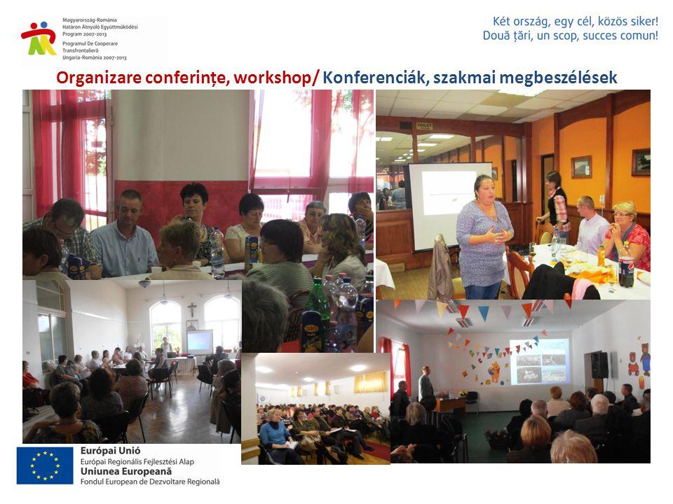 Organizare conferințe, workshop/ Konferenciák, szakmai megbeszélések