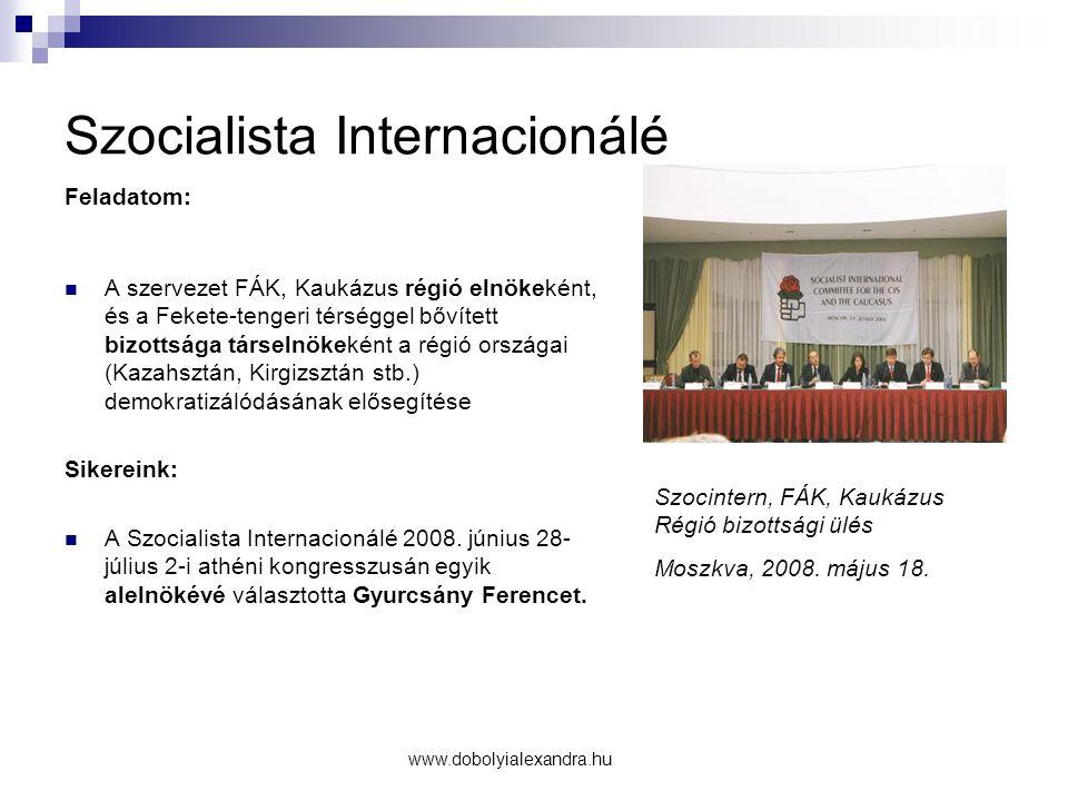 Szocialista Internacionálé Feladatom: A szervezet FÁK, Kaukázus régió elnökeként, és a Fekete-tengeri térséggel bővített bizottsága társelnökeként a régió országai (Kazahsztán, Kirgizsztán stb.) demokratizálódásának elősegítése Sikereink: A Szocialista Internacionálé 2008.