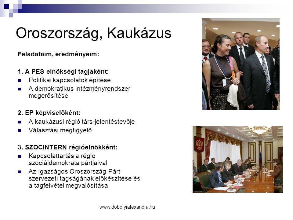 Oroszország, Kaukázus Feladataim, eredményeim: 1. A PES elnökségi tagjaként: Politikai kapcsolatok építése A demokratikus intézményrendszer megerősíté
