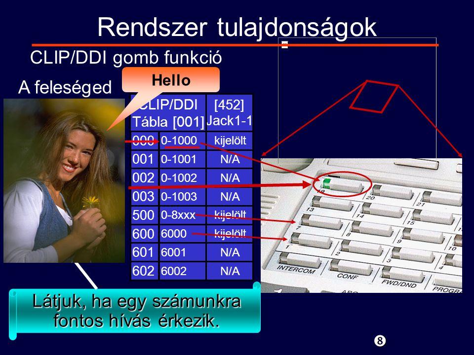 CLIP1000Hívó1000 Rendszer tulajdonságok CLIP/DDI gomb funkció Látjuk, ha egy számunkra fontos hívás érkezik.