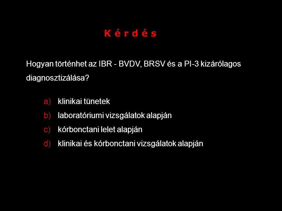 K é r d é s Hogyan történhet az IBR - BVDV, BRSV és a PI-3 kizárólagos diagnosztizálása? a)klinikai tünetek b)laboratóriumi vizsgálatok alapján c)kórb