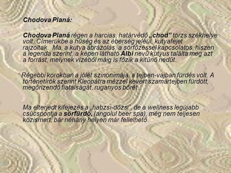 A tervezett út: Budapest – Chodova Planá – Marianske Lazné – Karlovy Vary – Prága – Budapest. Ez mintegy 1300km távolság, de kisebb nagyobb eltévedése