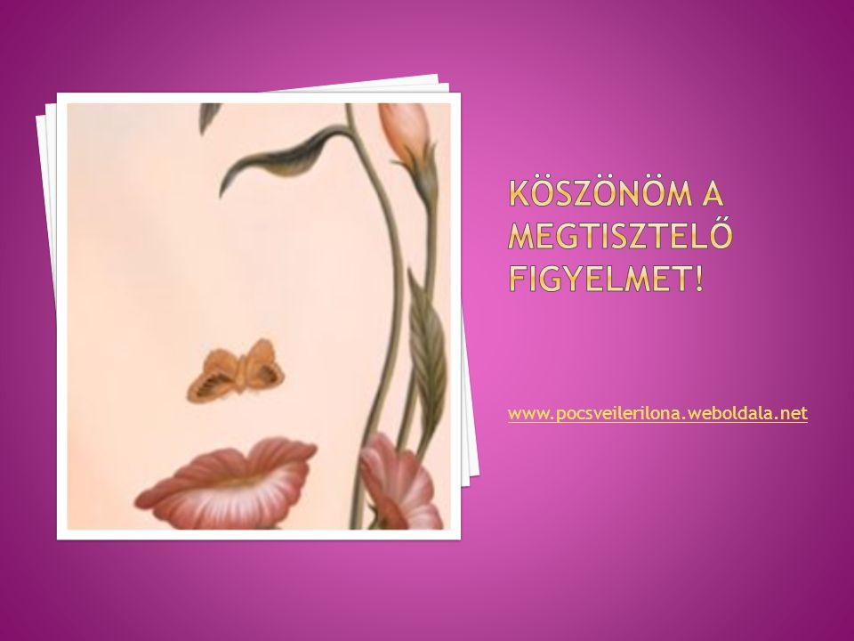 www.pocsveilerilona.weboldala.net