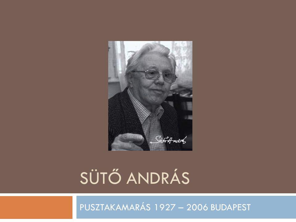 SÜTŐ ANDRÁS PUSZTAKAMARÁS 1927 – 2006 BUDAPEST
