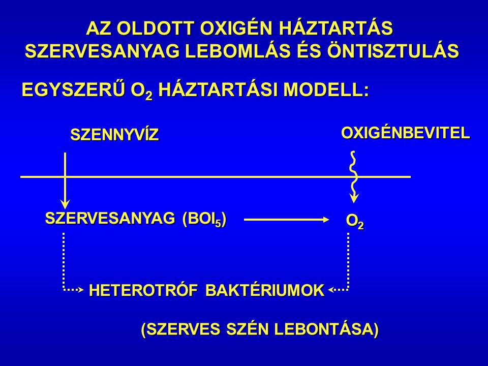 Vízminőségi modellek Oxigén háztartást befolyásoló folyamatok: szervesanyag lebomlása, nitrifikáció, fotoszintézis, légzésOxigén háztartást befolyásol
