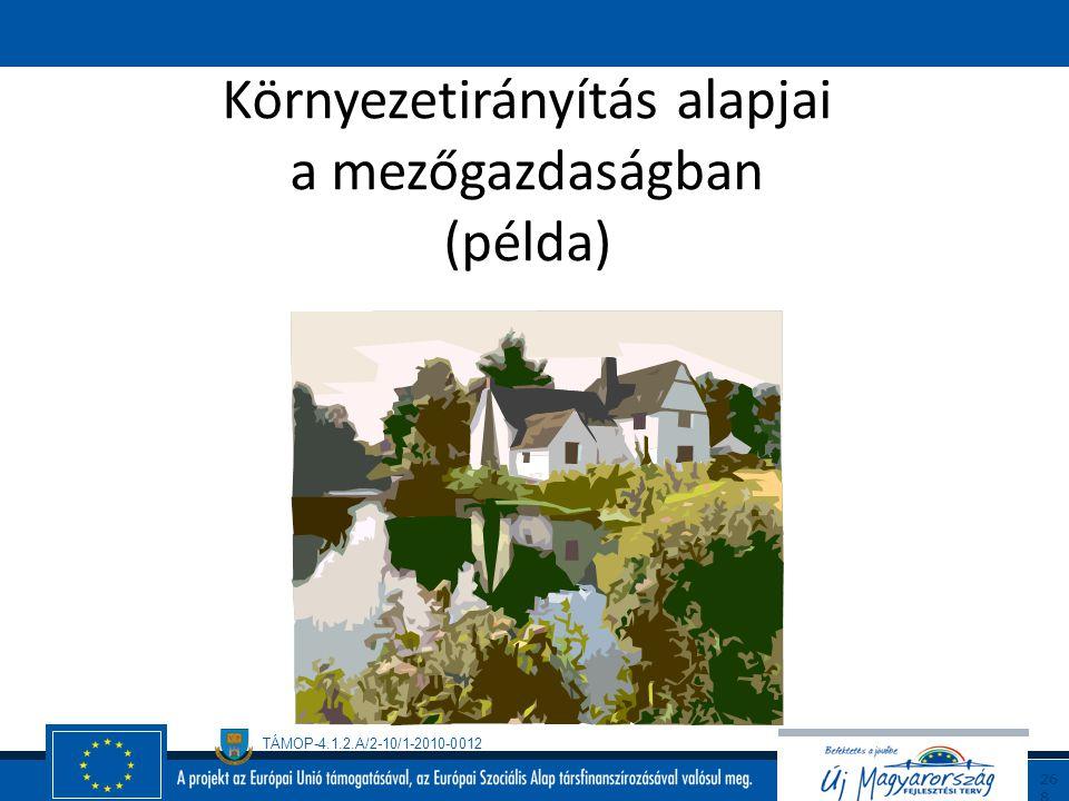 TÁMOP-4.1.2.A/2-10/1-2010-0012 26 7 A Tanusítás folyamata Előaudit Dokumentáció vizsgálat, Helyszíni audit, Auditjelentés készítése (pozitív esetben j