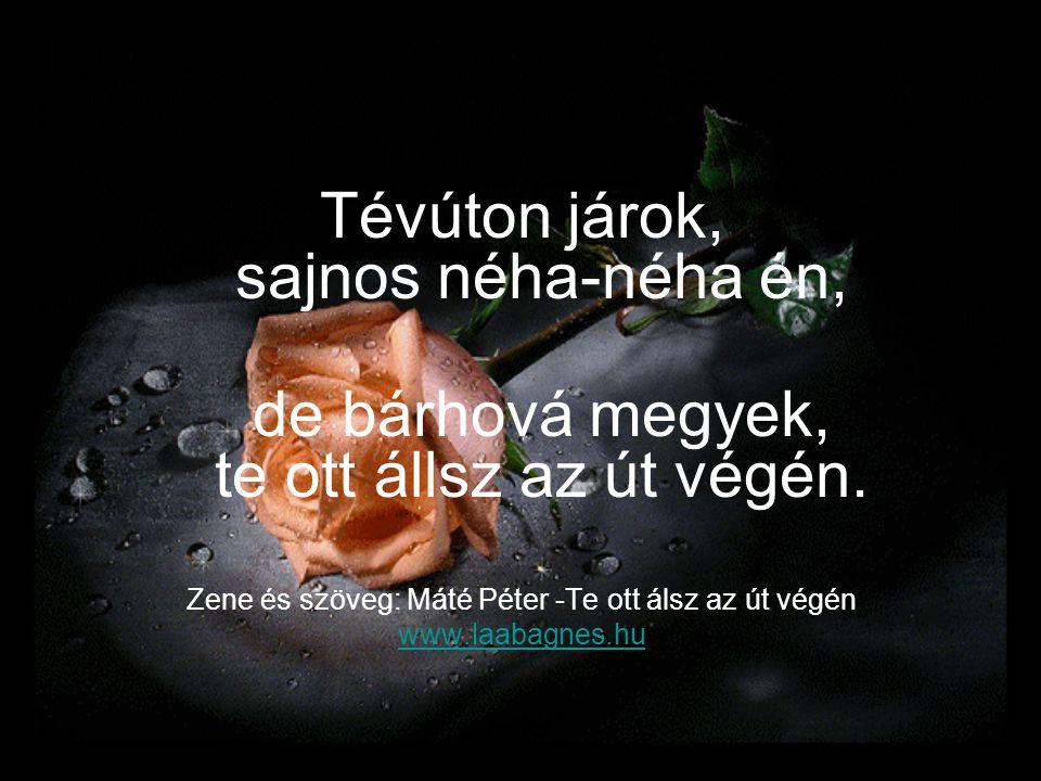 Tévúton járok, sajnos néha-néha én, de bárhová megyek, te ott állsz az út végén. Zene és szöveg: Máté Péter -Te ott álsz az út végén www.laabagnes.hu
