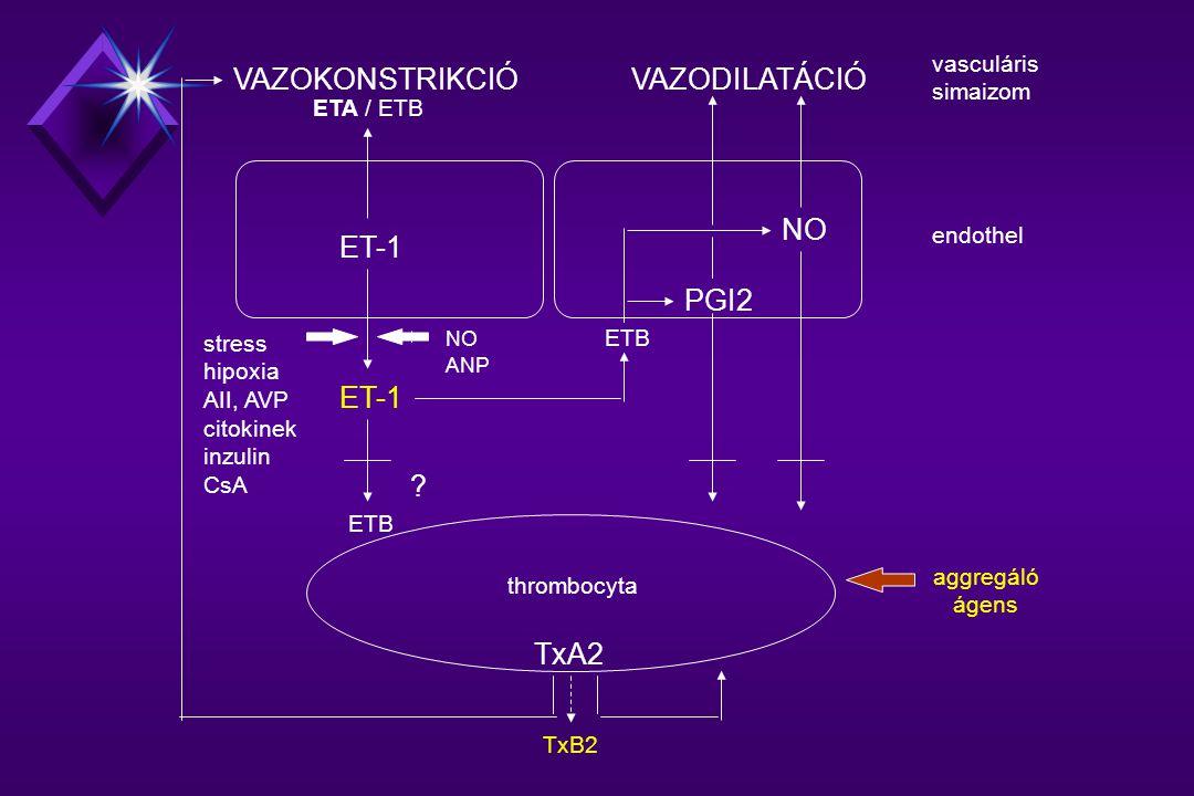ET-1 ETB PGI2 NO .