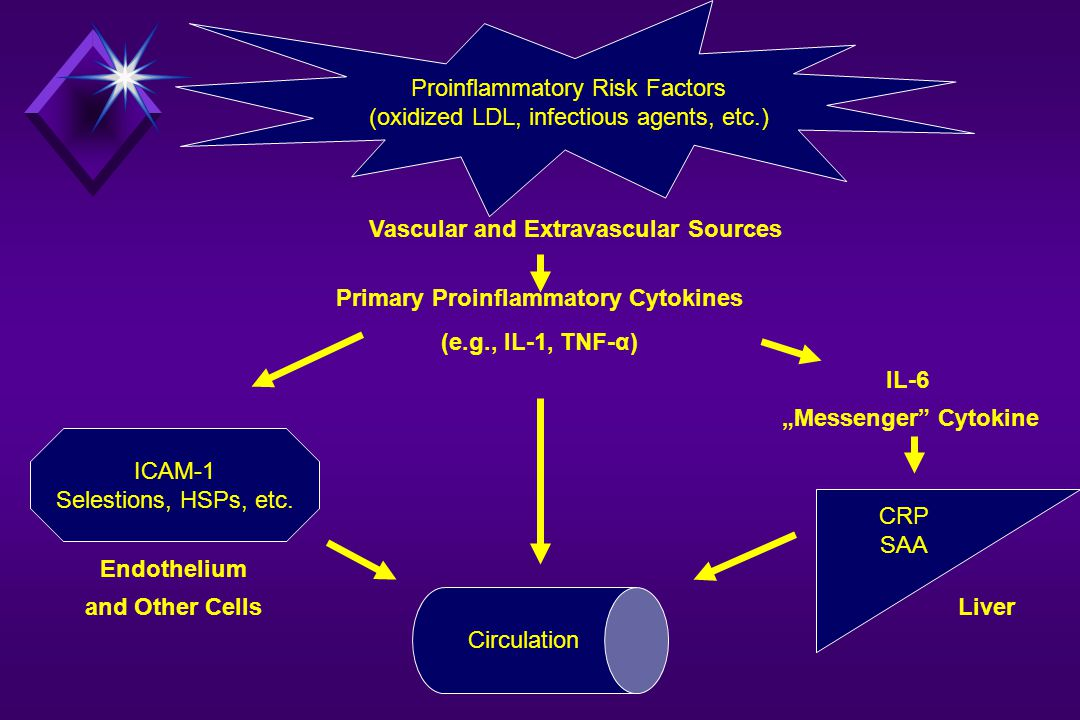 Proinflammatory Risk Factors (oxidized LDL, infectious agents, etc.) ICAM-1 Selestions, HSPs, etc. CRP SAA Circulation Vascular and Extravascular Sour