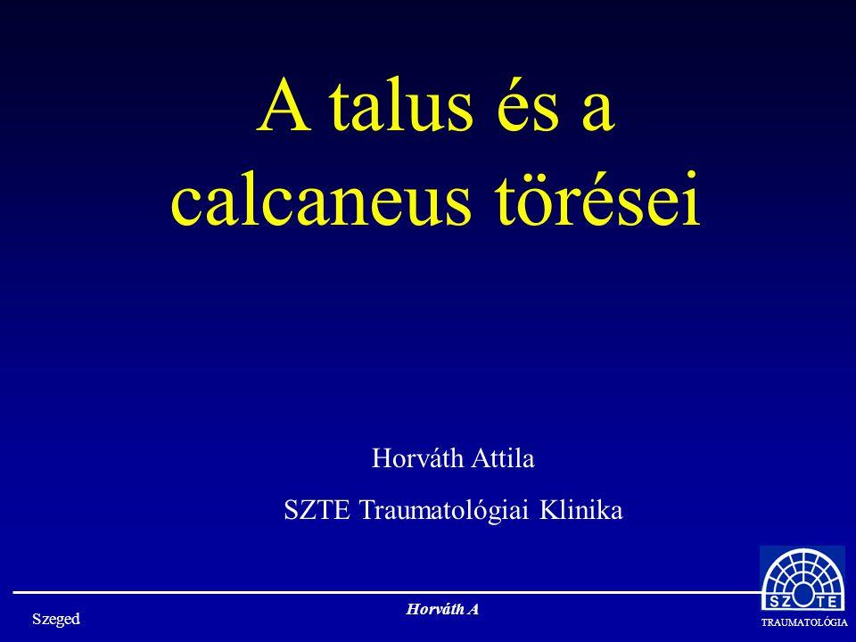 TRAUMATOLÓGIA Szeged Horváth A Horváth Attila SZTE Traumatológiai Klinika A talus és a calcaneus törései
