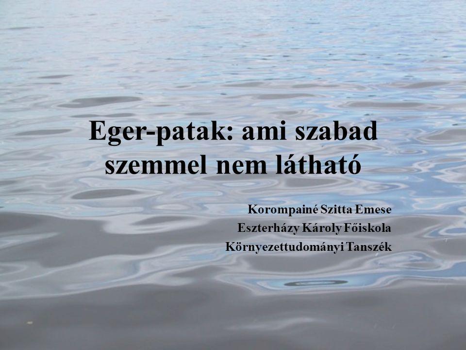 Eger-patak: ami szabad szemmel nem látható Korompainé Szitta Emese Eszterházy Károly Főiskola Környezettudományi Tanszék