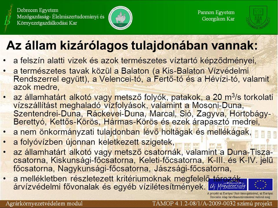 Az állam kizárólagos tulajdonában vannak: a felszín alatti vizek és azok természetes víztartó képződményei, a természetes tavak közül a Balaton (a Kis