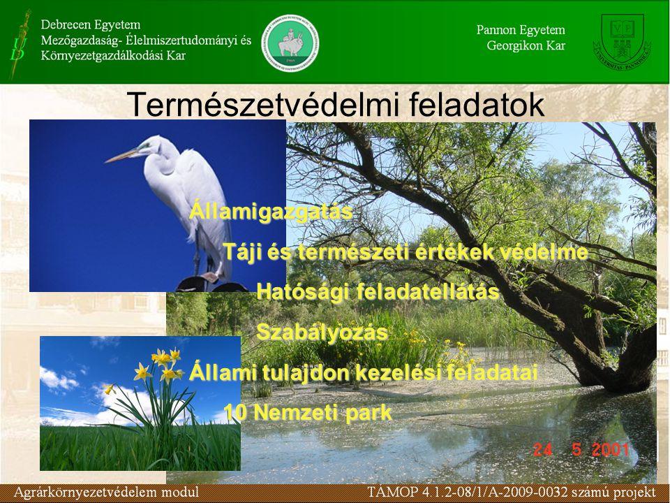 Természetvédelmi feladatok Államigazgatás Táji és természeti értékek védelme Hatósági feladatellátás Szabályozás Állami tulajdon kezelési feladatai 10