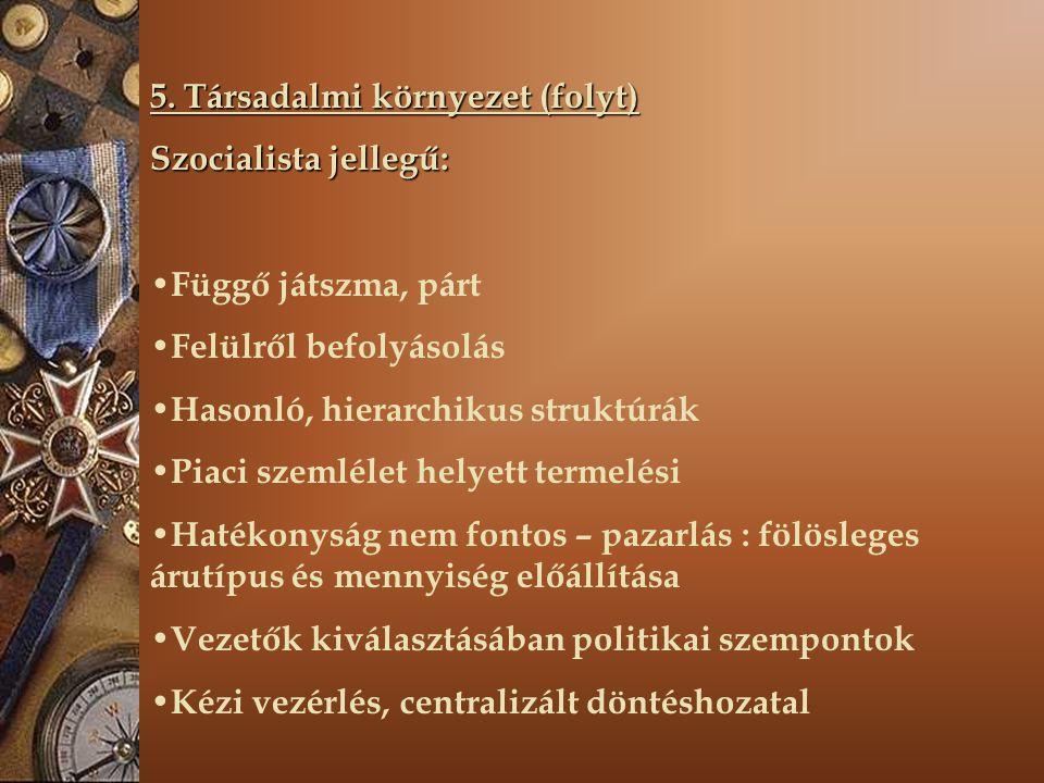 5. Társadalmi környezet (folyt) Szocialista jellegű: Függő játszma, párt Felülről befolyásolás Hasonló, hierarchikus struktúrák Piaci szemlélet helyet