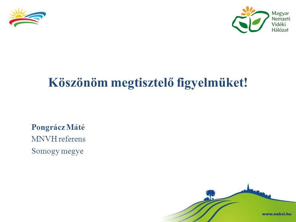 Köszönöm megtisztelő figyelmüket! Pongrácz Máté MNVH referens Somogy megye