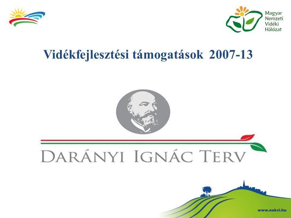 A Magyar Nemzeti Vidéki Hálózat (MNVH) Az MNVH elsődleges feladata a vidékfejlesztésben érdekelt összes szereplő együttműködési hálózatba szervezése: A kormányzati, a szakmai és a civil szféra közötti információáramlás megszervezése; A vidékfejlesztéshez kapcsolódó jelentős témák, problémák folyamatos felvetése, vizsgálata; A jövőbeli vidékprogramokkal kapcsolatos véleményezés, tanácsadás, állásfoglalás; A legjobb gyakorlatok terjesztése; Az MNVH-hoz regisztrált tagok szakmai összefogásának, párbeszédének elősegítése.