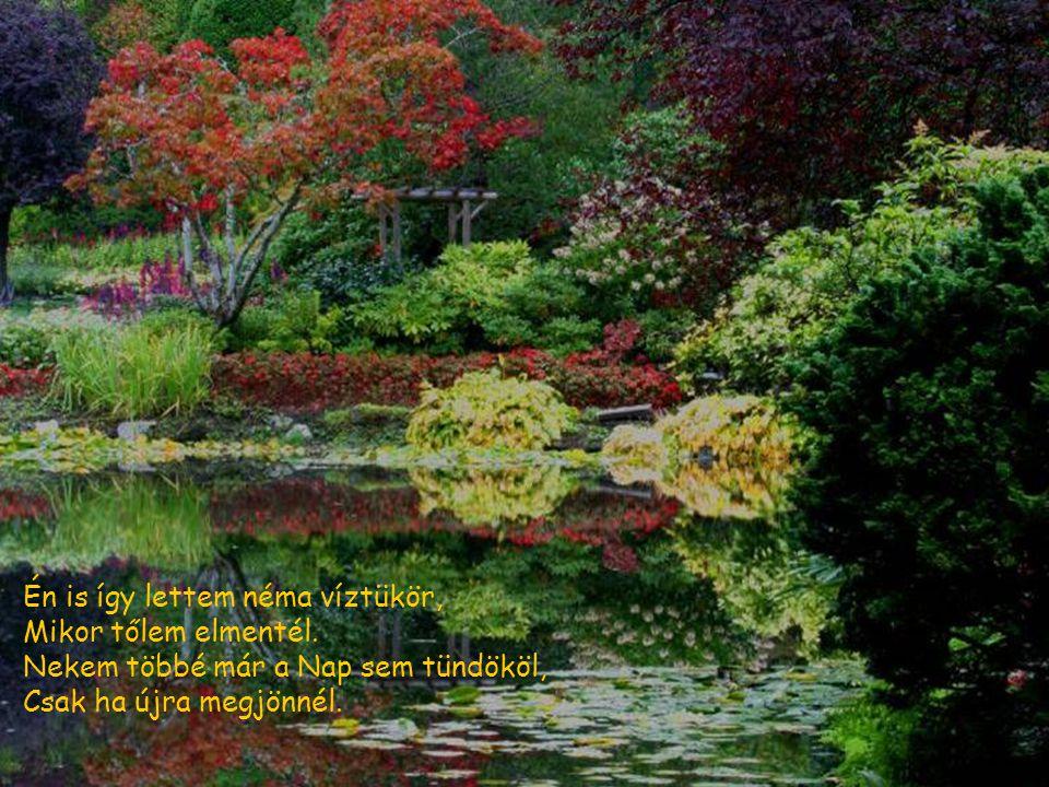 Egy kis patak mindig rohant, s egyre csak énekelt. Egy sziklafal útjába állt, s a dalnak így vége lett.
